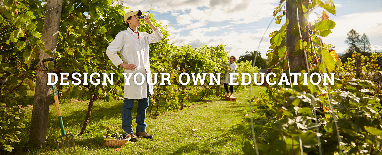 Design Your Own Education