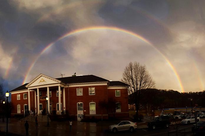 Ellis Rainbow