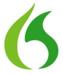 Nuance Dragon logo