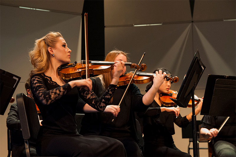 Orchestra photo 008
