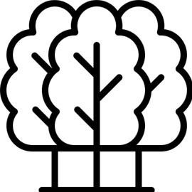 Environment Icon