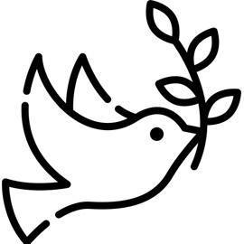 PACS Icon