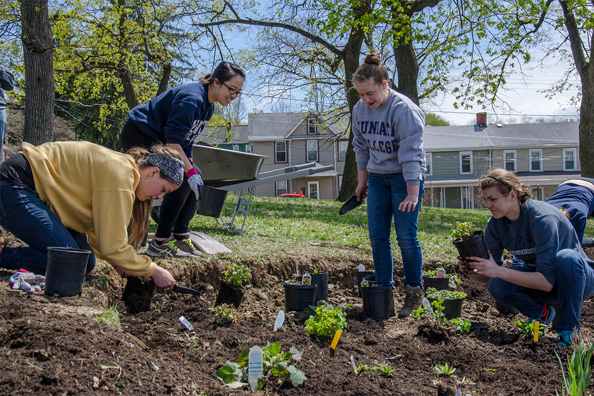 Students Build Community Garden